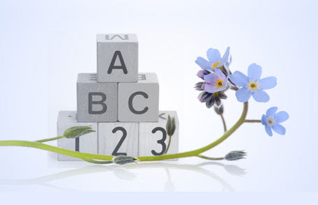 Baby blocks and flowers