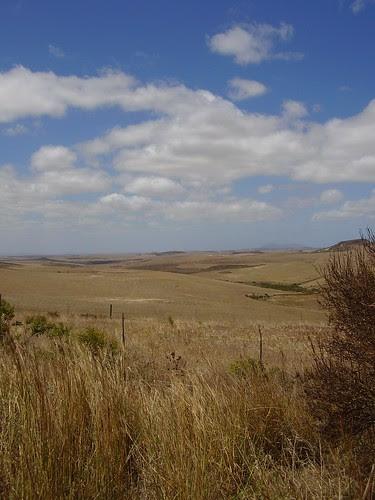 Sydafrika 2007 426