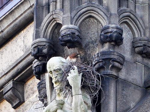 Isolde in Her Nest