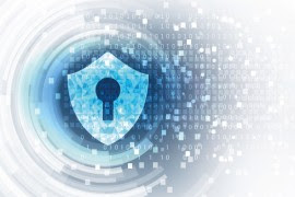 Cybersecurity: into the data breach