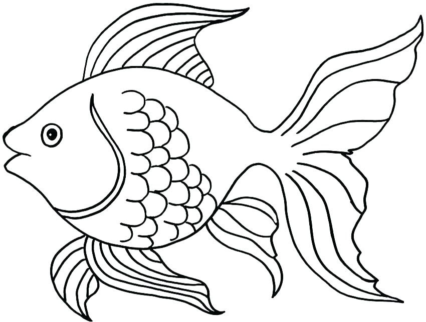 Small Fish Coloring Pages at GetColorings.com | Free ...