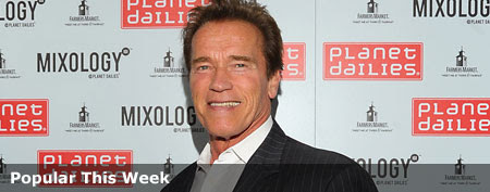 Arnold Schwarzenegger (Noel Vasquez/WireImage)