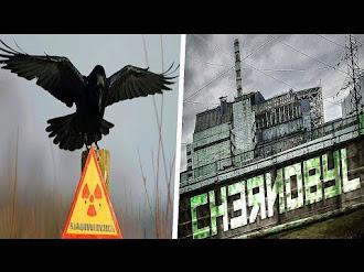 La Escalofriante Leyenda de El Pájaro Negro de Chernóbil