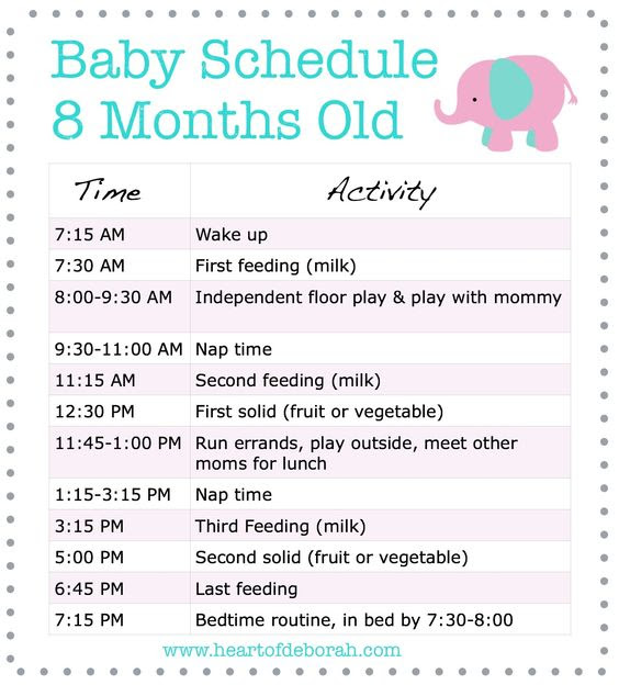 Daily Schedule 8 Month Old