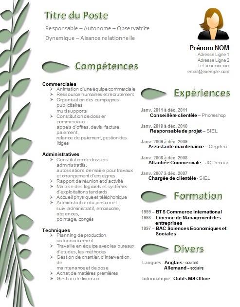 Exemple De Guide D Entretien Marketing - Le Meilleur Exemple