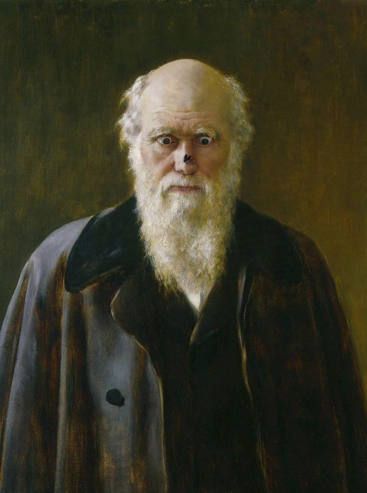 Darwin retrato