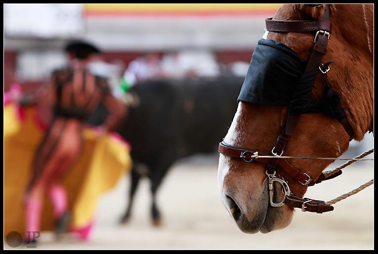 caballo-de-picar