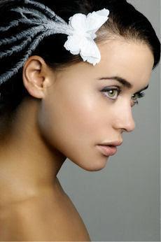 http://media.paperblog.fr/i/73/733994/lucy-premium-accessoires-cheveux-L-6.jpeg