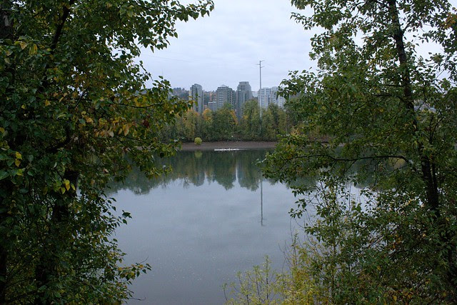 view from riverside park