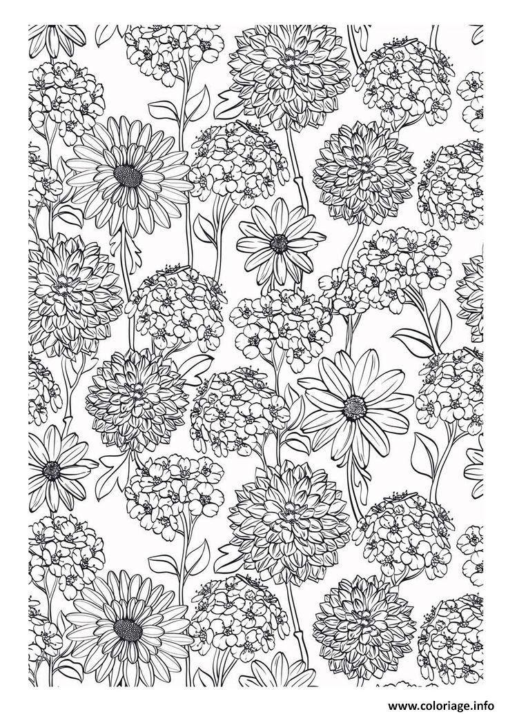 Coloriage Fleurs Bulbe.Coloriage Fleurs Et Plantes A Imprimer Coloriage