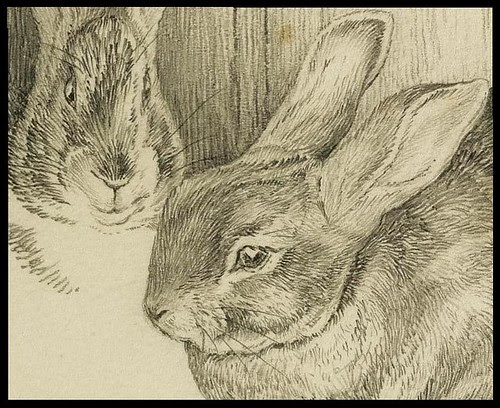 Two Bunnies (detail)