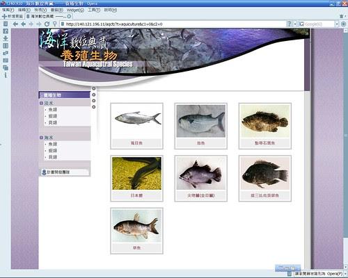 20080307_ODAP-Opera