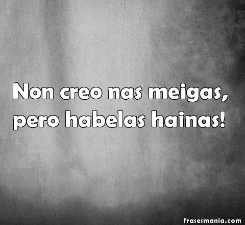 Frases De Gallego 32 Frases