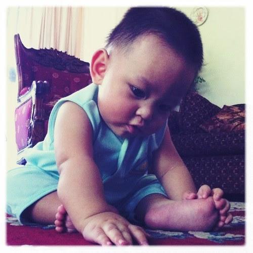 Qeeb 7 months
