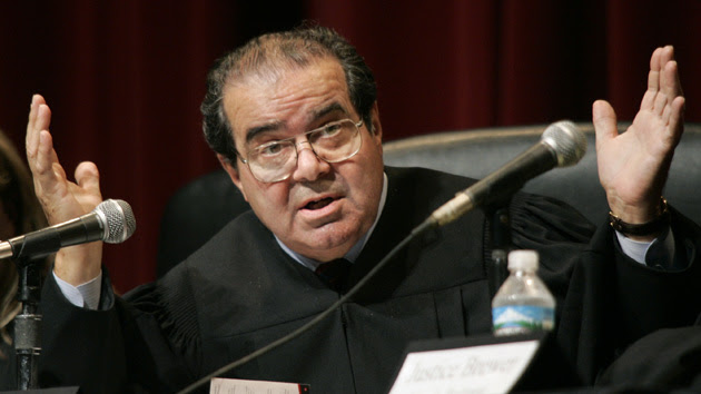 Image result for scalia images