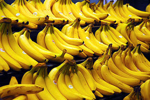 'Cavendish' bananas in a grocery store