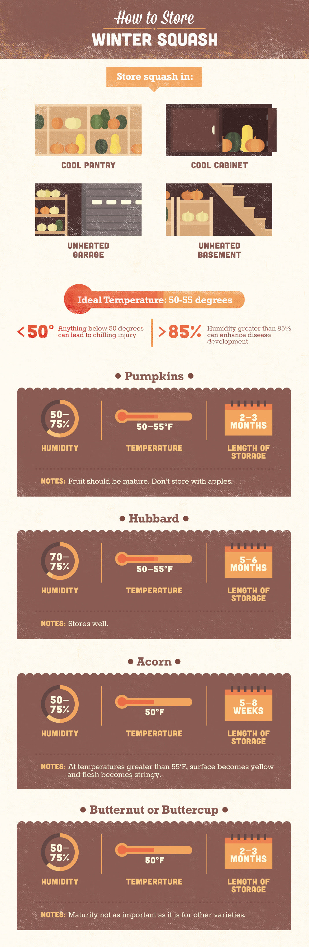 Infographic: How To Store Winter Squash