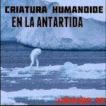 Humanoid Creature in Antarctica / Criatura Humanoide en la Antártida