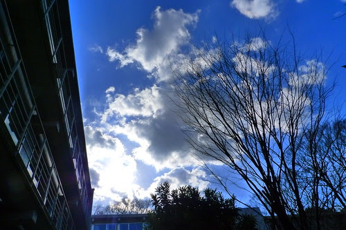 Blue skies outside Wakeijuku