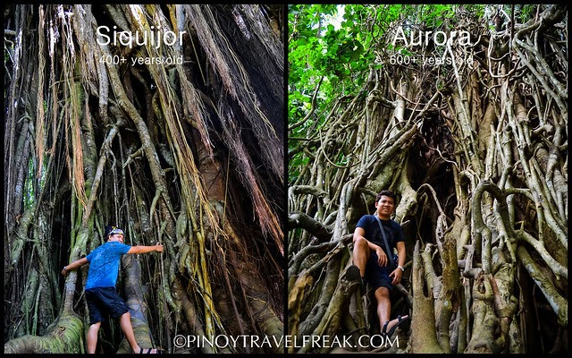pinoy travel freak siquijor and aurora oldest and