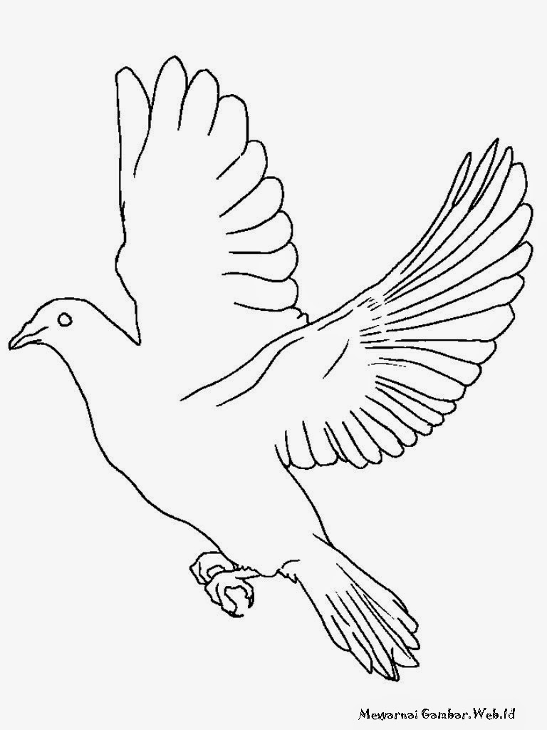 Unduh 97 Gambar Burung Anak Sd Paling Baru Gratis