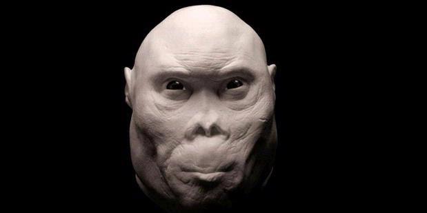 Wajah-wajah Nenek Moyang Manusia