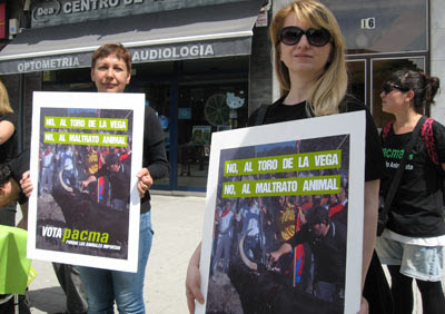 Militantes del Pacma hacen campaña contra el Toro de la Vega en Tordesillas. FOTO: HENRIQUE MARIÑO