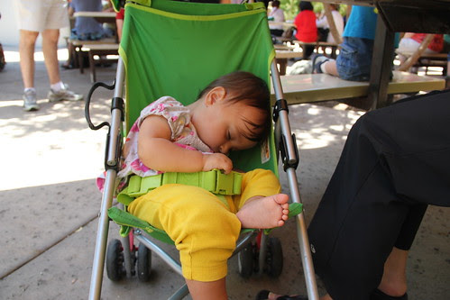 Jovie got pretty tired at the zoo