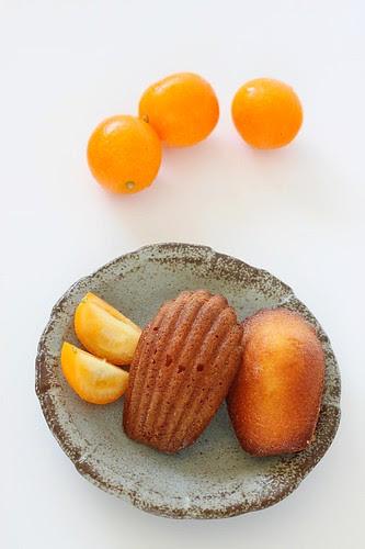 Kumquat 10
