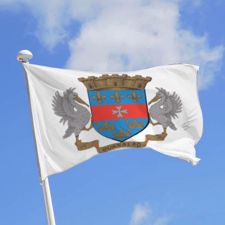 """Résultat de recherche d'images pour """"drapeau saint-barthélémy"""""""
