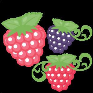 Raspberry Set SVG scrapbook cut file cute clipart files for silhouette cricut pazzles free svgs free svg cuts cute cut files