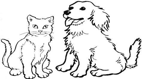coloring pages   draw  cat  dog easy zaman