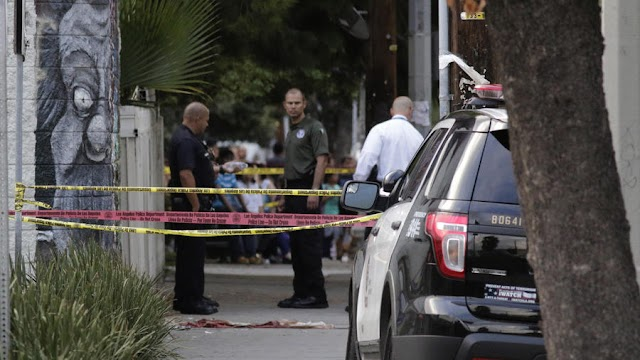 Los Angeles Chronicle :LAPD shoots, kills man allegedly armed with handgun in Panorama City