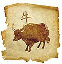 Risultati immagini per zodiaco cinese bufalo