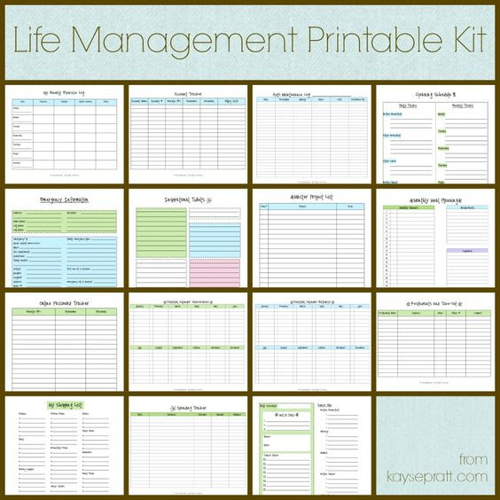 Life Management Printable Kit Includes these 15 printables: Auto ...