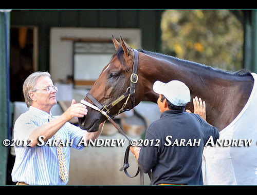Back at the barn after his victory in the Grade 1 Woodward Stakes at Saratoga Race Course, To Honor and Serve gets the star treatment from Hall of Fame trainer Bill Mott and his groom.