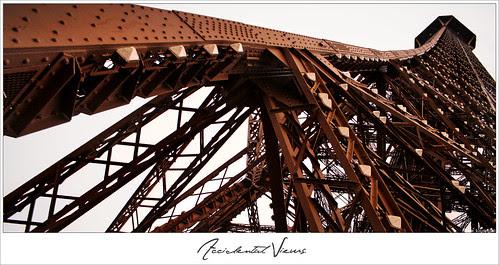 Accidental Views - Eiffel