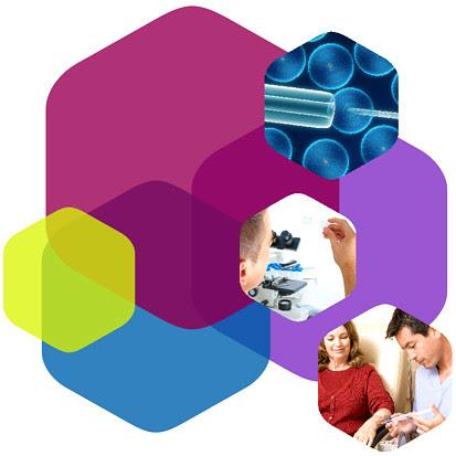 Jornadas de Ética de la Investigación Biomédica de Andalucía