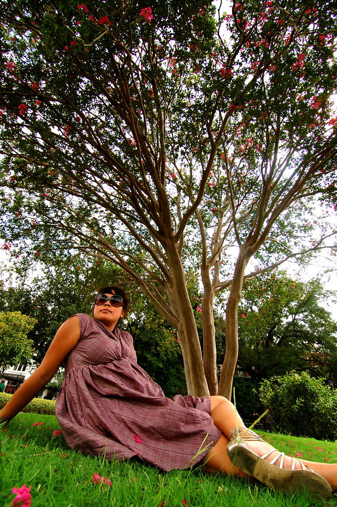 under a tree in jackson square