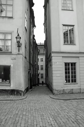 54 av 365 - Vem där? by Yvonne L Sweden