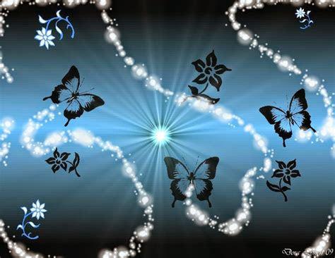 butterfly desktop backgrounds wallpaper view