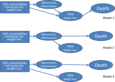 The Obesity Paradox in Kidney Disease: How to Reconcile It With Obesity Management  Kidney