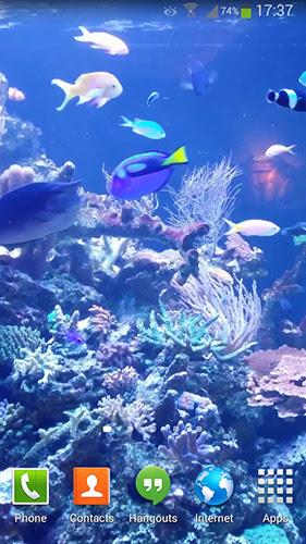 Aquarium Hd 2 Pour Android Télécharger Gratuit