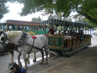 the group waiting for the Stanley Park carriage ride to start.  Their carriage is pulled by two horses, Newman and Howie