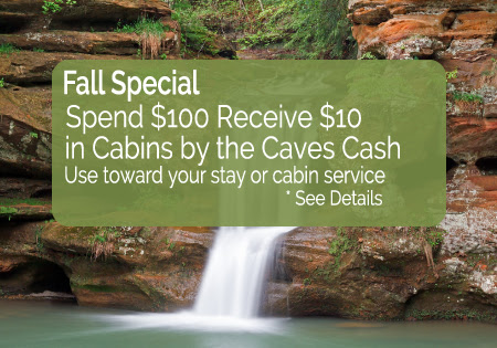 Fall Cabin Specials