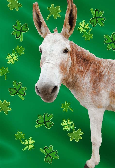 Big Ass Donkey Funny St. Patrick's Day Card   Greeting
