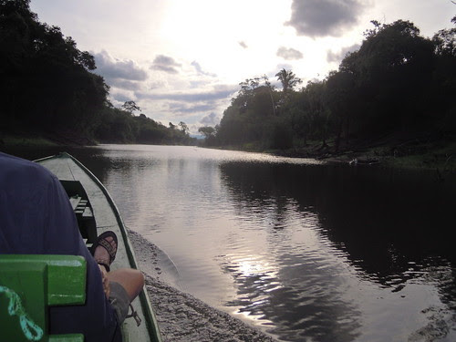 touring Rio Negro in the Amazon rainforest
