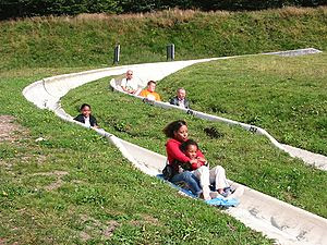 People participating in summer luge as a form ...
