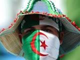 supporter Algérie  Coupe du Monde 2014