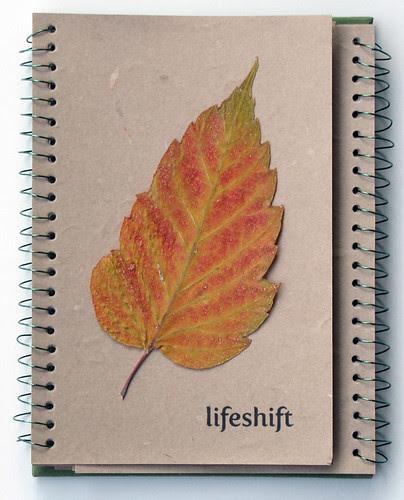 lifeshift #2